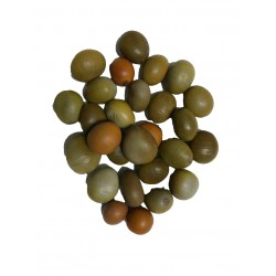 Semillas guacalote ref. 0929